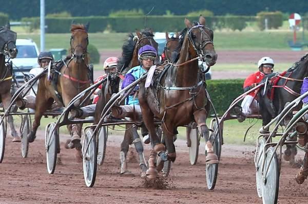 Photo de EMIR DU PONT cheval de TROT ATTELE