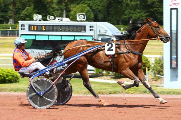 Photo de DEFI DE RETZ cheval de TROT ATTELE