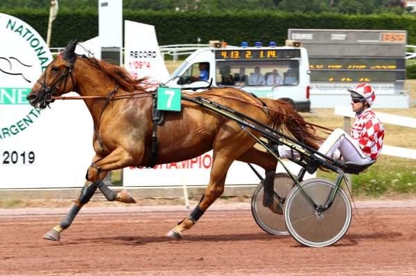 Photo de CRACK MONEY cheval de TROT ATTELE
