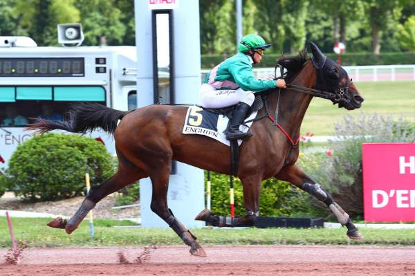 Photo de GRACE DE FAEL cheval de TROT MONTE
