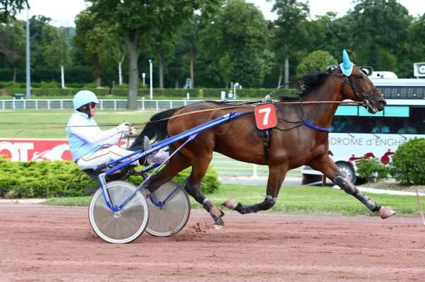 Photo de EMPEREUR DE REUX cheval de TROT ATTELE