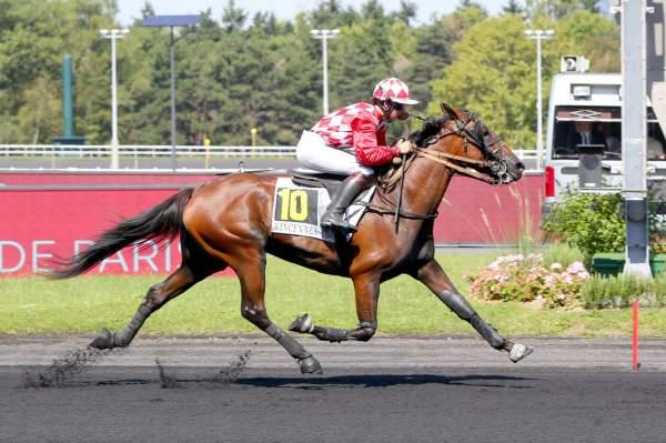 Photo de FRIMEUR DU START cheval de TROT MONTE