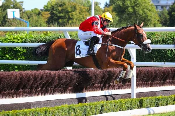 Photo de GALLEO CONTI cheval de STEEPLE CHASE