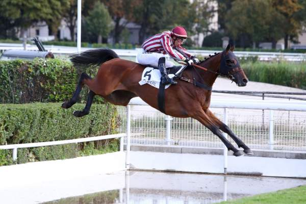 La photo de Edgeoy Prix Richard Et Robert Hennessy à Auteuil