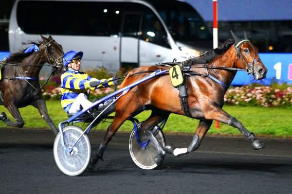 Photo de GAIA JIEL cheval de TROT ATTELE