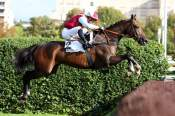 """The Autonomy Photo Pmu Price From Maisons-Laffitte to Auteuil """"class ="""" img-responsive img-thumbnail thumbnail pull-right mar-lft"""