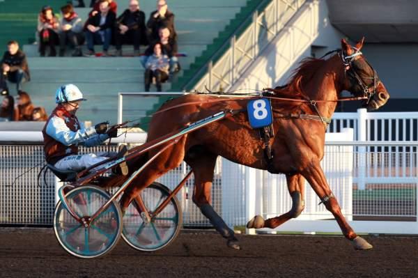 FUN QUICK - La fiche CANALTURF du cheval, performances pmu, pédigré,  évolution de la cote en direct, résultats rapports, courses 2020