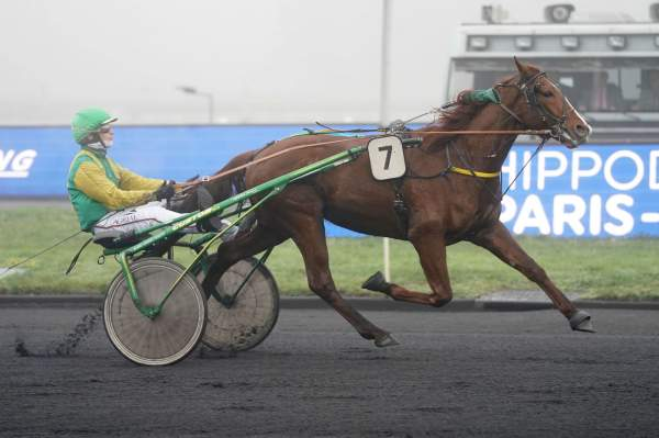 Photo de GENTLEMAN DE LARRE cheval de TROT ATTELE