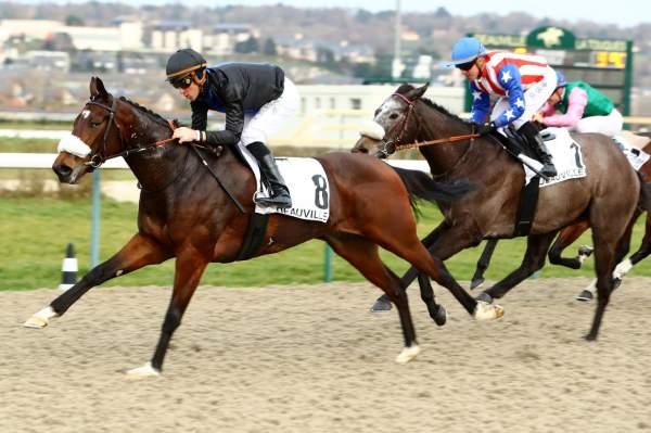 Photo de GRACE BERE cheval de PLAT