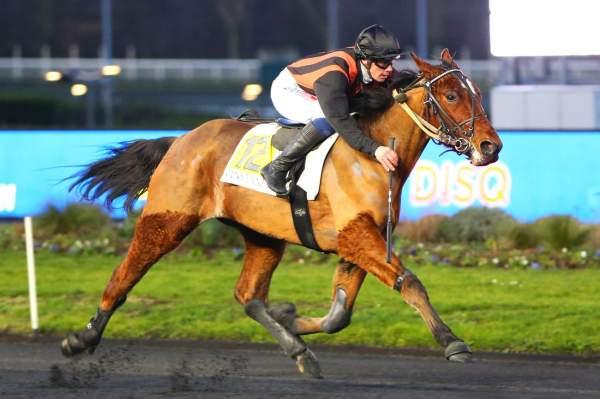HAMILTON RENKA - La fiche CANALTURF du cheval, performances pmu, pédigré,  évolution de la cote en direct, résultats rapports, courses 2020