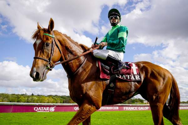 La photo de Sottsass Qatar Prix de l'Arc de Triomphe 2020