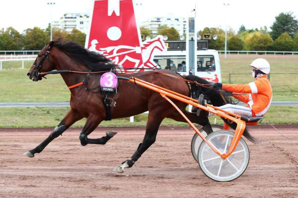Photo de HENZO CROWN cheval de TROT ATTELE