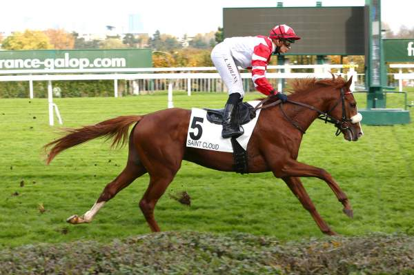 Photo de ABRAMS CREEK cheval de PLAT