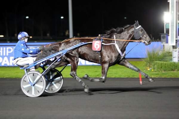 Photo de INVINCIBLE CASH cheval de TROT ATTELE