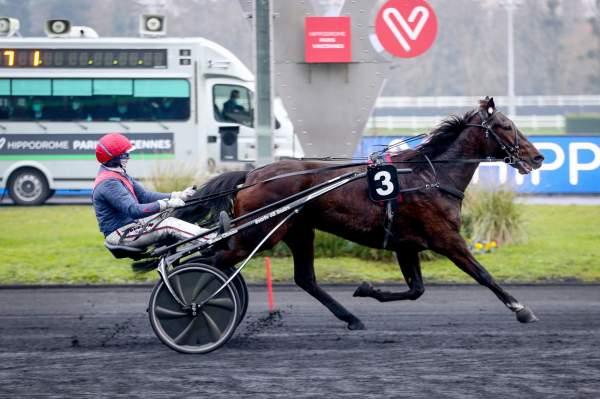 FARRELL SEVEN - La fiche CANALTURF du cheval, performances pmu, pédigré,  évolution de la cote en direct, résultats rapports, courses 2021