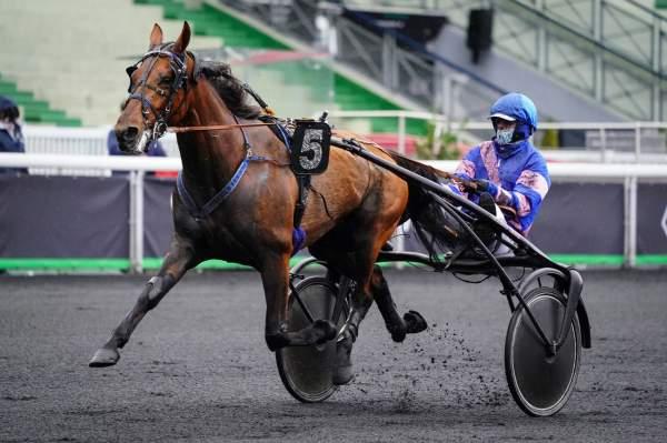 La photo de Helboy D'alesa Course Pmu Prix de Mansle 2020 à Vincennes