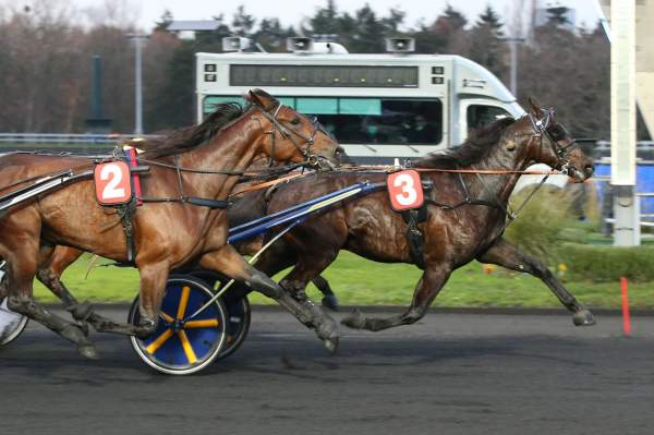 La photo de Gallant Way Course Pmu Pick5 Prix Oscar Collard 2020 à Vincennes