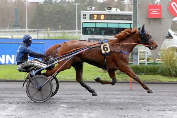 Photo de HERMINE DE RHEVE cheval de TROT ATTELE