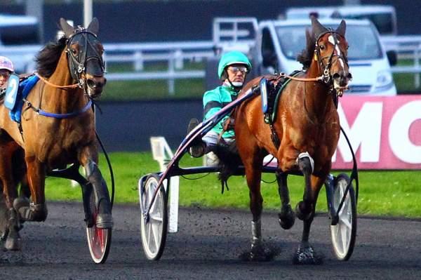 FASHION D'HERIPRE - La fiche CANALTURF du cheval, performances pmu,  pédigré, évolution de la cote en direct, résultats rapports, courses 2020