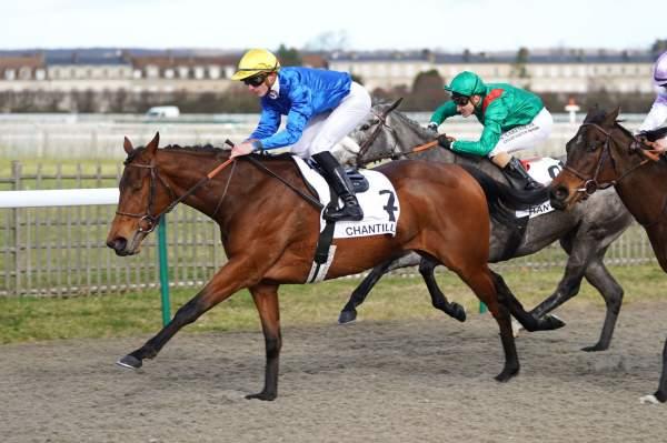 Photo de PENSEE SPIRITUELLE cheval de PLAT