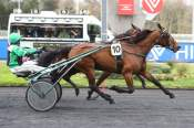 La photo de Unique Juni PRIX EMILE ALLIX COURBOY  QUINTE+ hippodrome de VINCENNES 27/02/2020