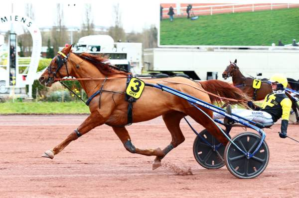 La photo de Defi Pierji Quinté+ Pmu Grand National du Trot 2020 à Amiens