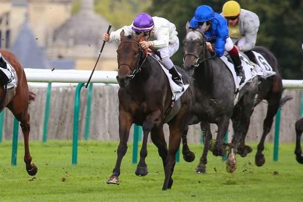 Photo de TONNENCOURT cheval de PLAT