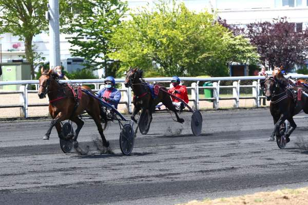 La photo de Fleche Du Yucca Quinté+ Pmu Grand National du Trot 2020 au Croisé-Laroche