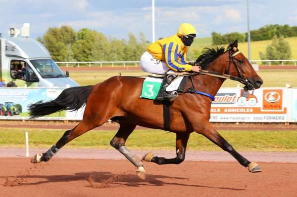 Photo de DEEDJAR DU VIVIER cheval de TROT MONTE