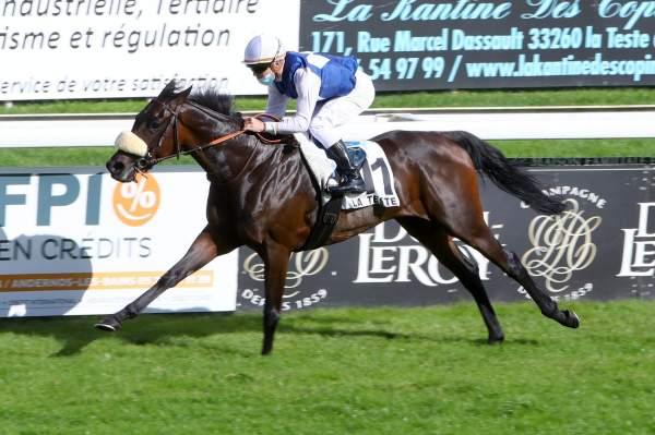 Photo de L'INDOMPTABLE cheval de PLAT