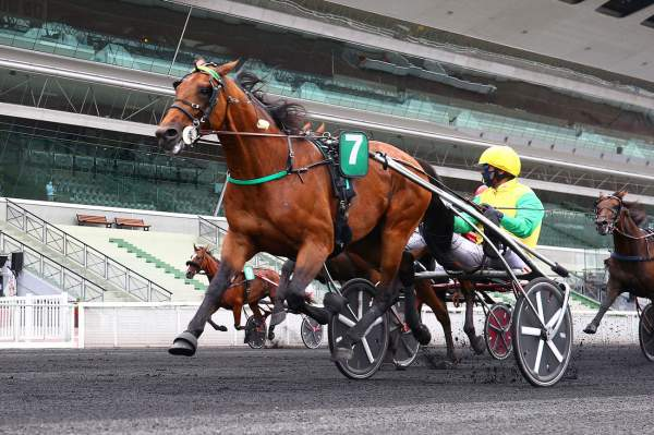 La photo de Face Time Bourbon Course Pmu Prix René Ballière (Gr.I) 2020 à Paris-Vincennes