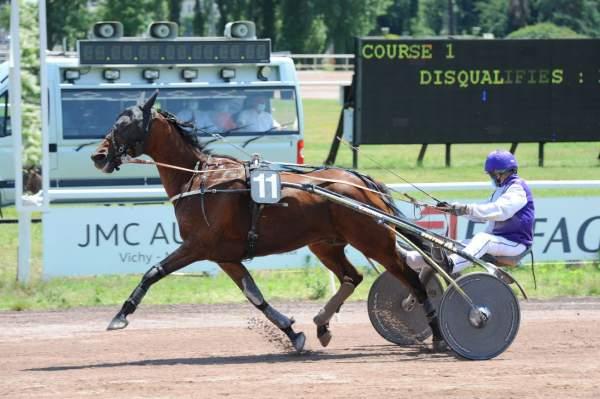 Photo de DROP DES DURIEZ cheval de TROT ATTELE