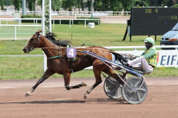 Photo de HIVRINE DE GUEZ cheval de TROT ATTELE
