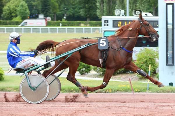 GALIUS - La fiche CANALTURF du cheval, performances pmu, pédigré, évolution  de la cote en direct, résultats rapports, courses 2020