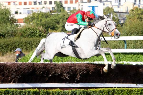 Photo de LE BERRY cheval de STEEPLE CHASE