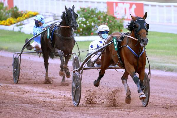 La photo de Go On Boy Course Pmu Prix de Milan 2020 à Enghien