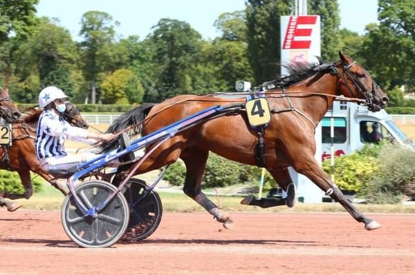 Photo de CARNAVAL DU VIVIER cheval de TROT ATTELE