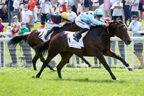Photo de FANTASTIC SPIRIT cheval de PLAT