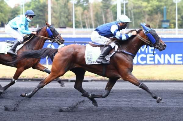 GRAZIA - La fiche CANALTURF du cheval, performances pmu, pédigré, évolution  de la cote en direct, résultats rapports, courses 2020