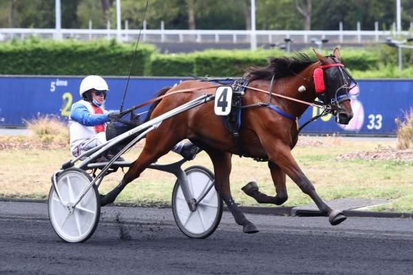 Photo de GALET DE RIVIERE cheval de TROT ATTELE