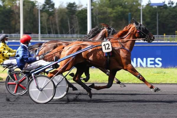 Photo de GHALIE DU GOUTIER cheval de TROT ATTELE