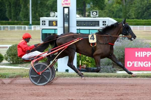 Photo de HAVILAH cheval de TROT ATTELE