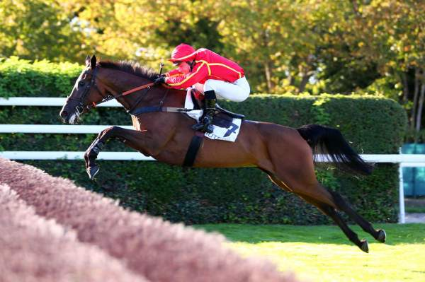 Photo de GLACE DES MERS cheval de STEEPLE CHASE