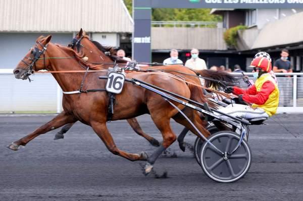 La photo de Dream De Lasserie Quinté Prix du Mont-Saint-Michel Hippodrome de Vincennes 05/09/2020