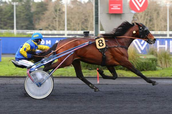 Photo de ZEROZEROSETTE GAR cheval de TROT MONTE