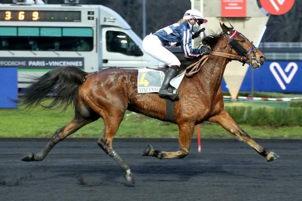 FLASH OUEST - La fiche CANALTURF du cheval, performances pmu, pédigré,  évolution de la cote en direct, résultats rapports, courses 2021
