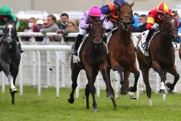Photo de BEAUTY QUEEN cheval de PLAT