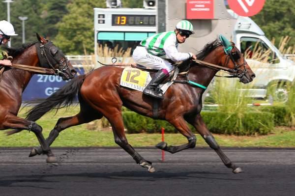 Photo de HEROINE DU CITRUS cheval de TROT MONTE