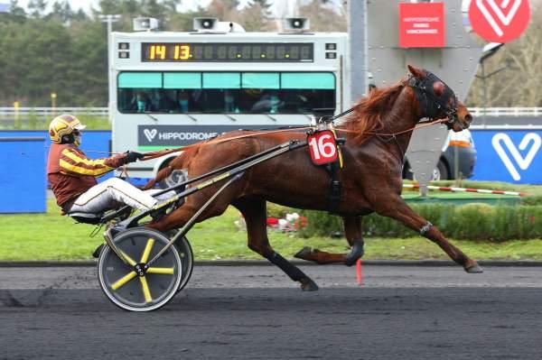 Photo de GAMISAKA cheval de TROT ATTELE