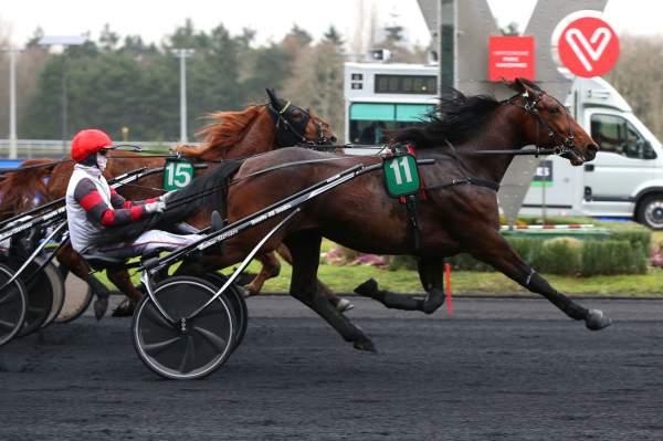 Photo de HYMNE DU GERS cheval de TROT ATTELE